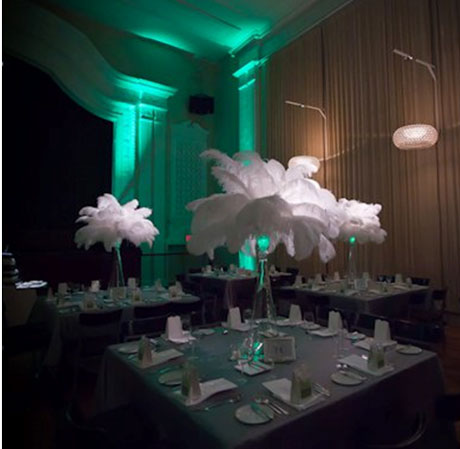 Ostrich-feather wedding centerpieces