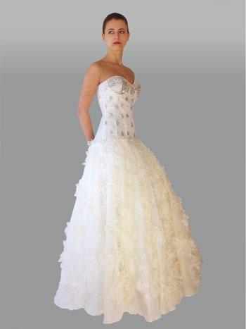 Lillen canadian strapless gown 2010: #551