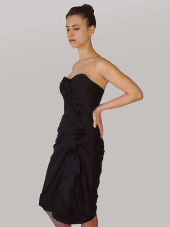 Lillen canadian strapless cocktail bridesmaids dress 2010: Riana