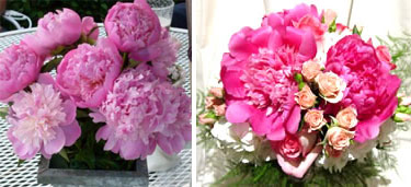 Wedding flowers: Peonies - bouquet & centerpiece