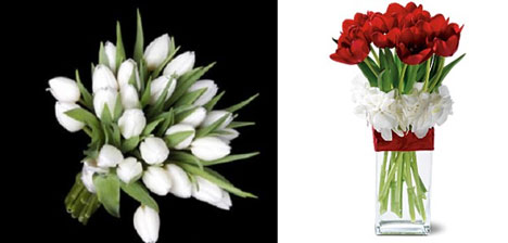 Wedding Flowers: tulips, white & red, bouquet & centerpiece