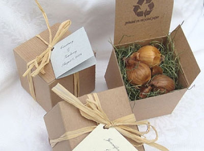 Plantable, green, wedding favor: iris flower bulbs