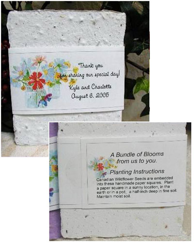 wildflower seed square green wedding favours