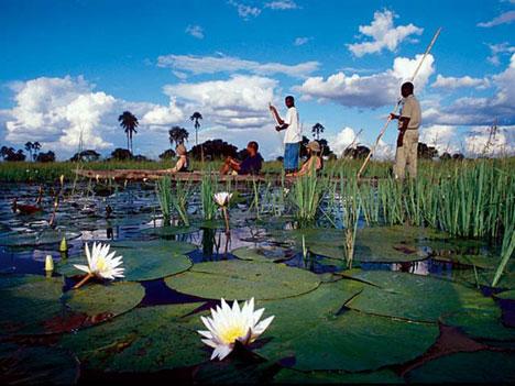 Intimate adventure honeymoon trekking in the Okavango Delta