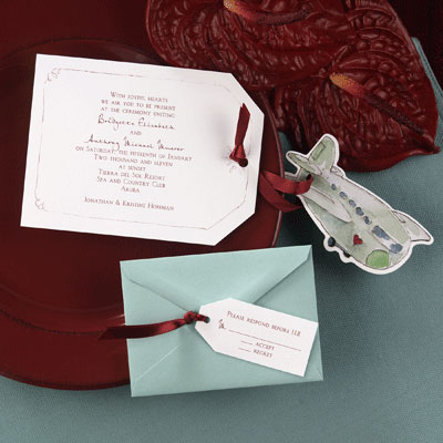 Cure airplane ride wedding invite