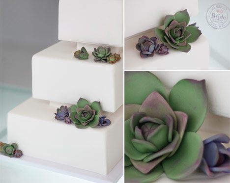 Square white triple tier fondant wedding cake with green and purple succulent sugar flowers.