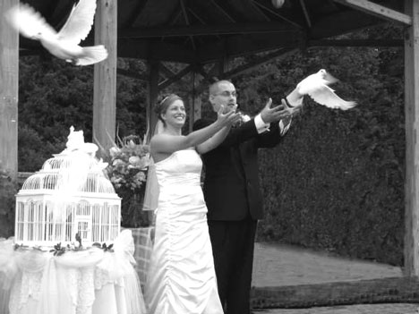 white dove release after a wedding ceremony
