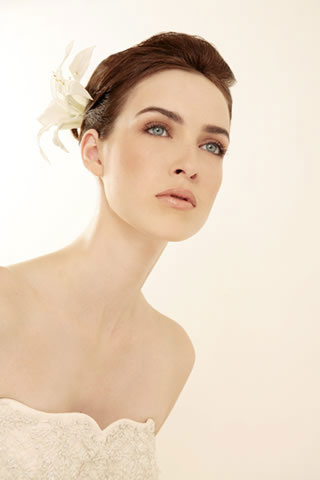 classic hairstyle. Ball gown bridal hairstyle,