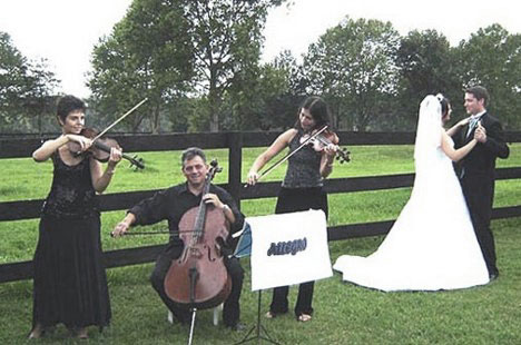 Bride Wedding Music 101 Classical Instruments For Your